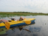 Kayaking trip along Biebrza River - 8 days
